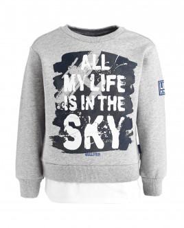 Gray fleece sweatshirt Gulliver
