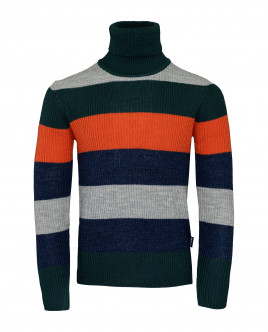 Striped turtleneck Gulliver