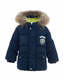 Blue quilted jacket Gulliver
